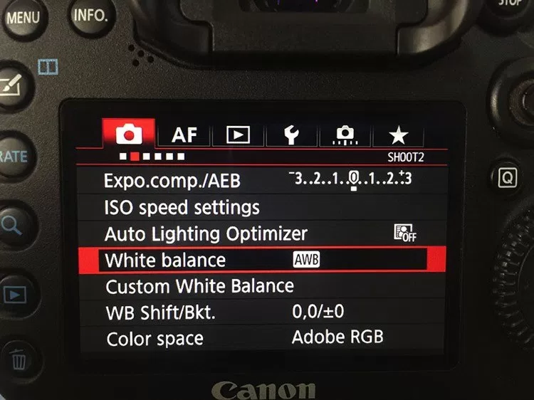 adjusting white balance on camera