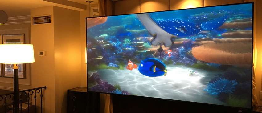nemo projected on a projector screen