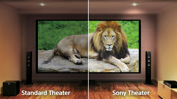 standard vs sony theater