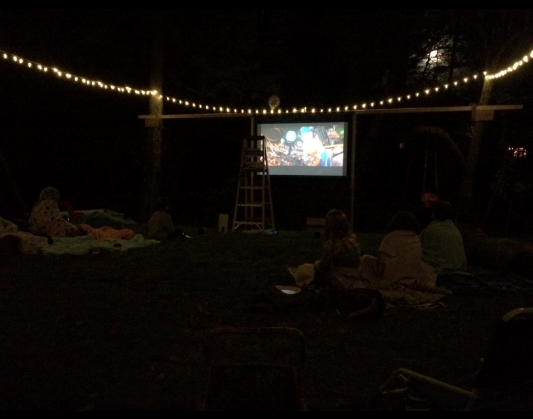epson 2045 outside viewing