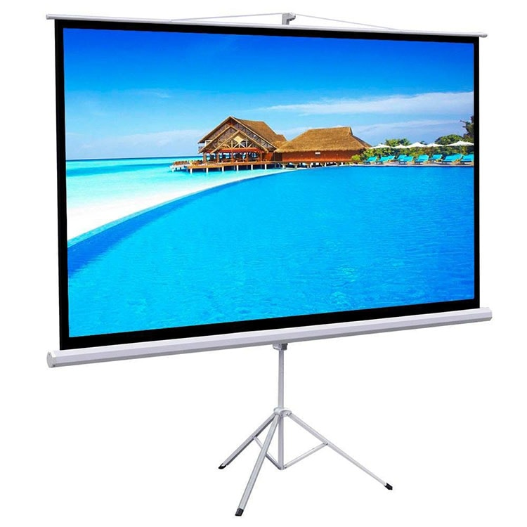 Gotobuy-100 projector screen